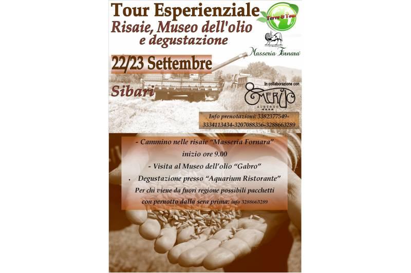TOUR ESPERIENZIALE - BORGO DI MORANO CALABRO - CAMMINO RISAIE - MUSEO DELL'OLIO (PARCO NAZIONALE DEL POLLINO E ALTO IONIO)